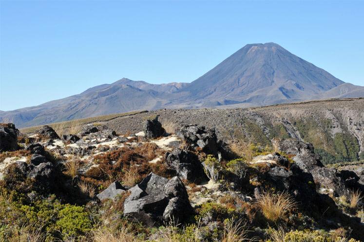 Fotos: Reise: Neuseeland